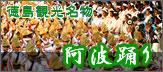 徳島観光名物 阿波踊り